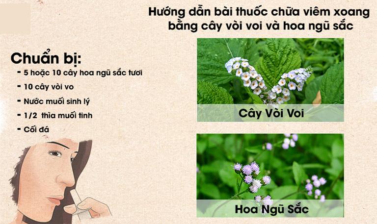 chua-viem-xoang-bang-cay-voi-voi.jpg
