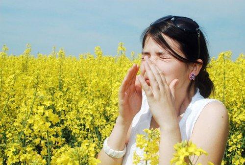 Lý do khiến viêm mũi dị ứng thường xuất hiện vào lúc chuyển mùa