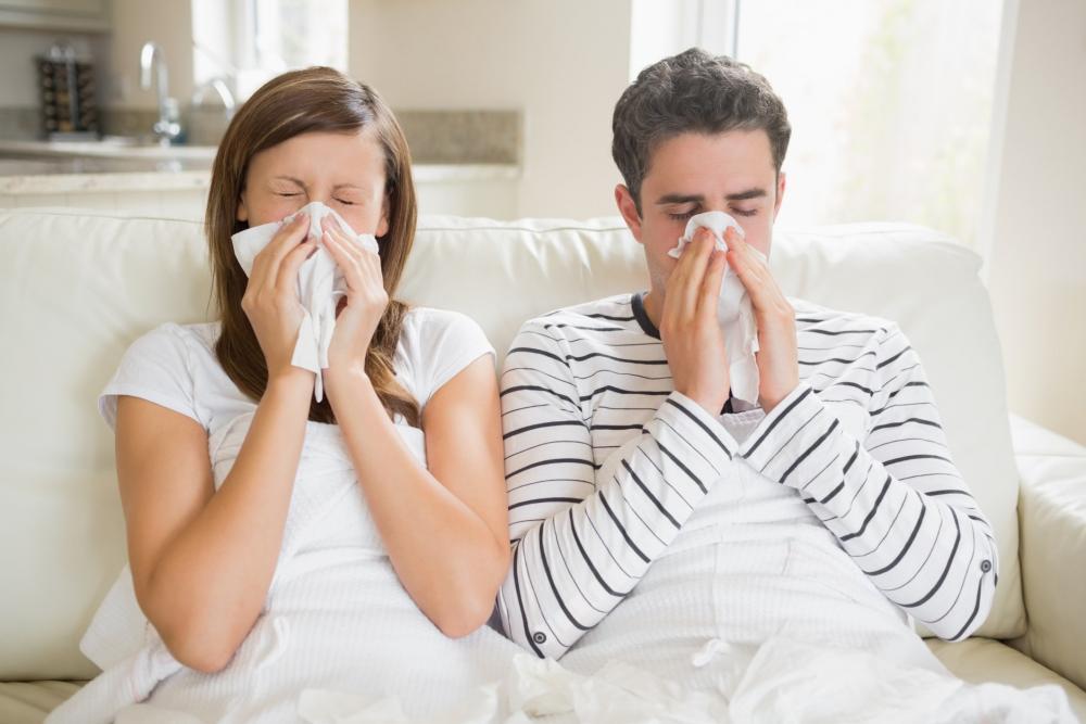 6 bước hạn chế viêm mũi dị ứng